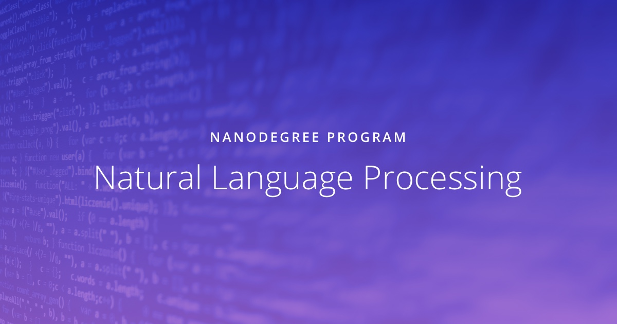 Natural Language Processing Online Course